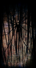 The_Slender_Man_by_Pirate_Cashoo.jpg